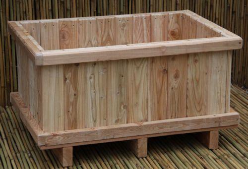 bambus pflanzenshop pflanzk bel kaufen. Black Bedroom Furniture Sets. Home Design Ideas